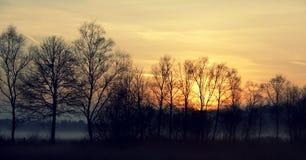 Nebeliges Traumland bei Teufelsmoor, Deutschland Stockbild