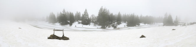 Nebeliges Winterpanorama lizenzfreies stockfoto