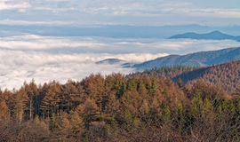 Nebelmeer bei Takabotchiyama, Okaya, Japan Stockfotos