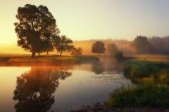 Nebelmorgen Stockfotos