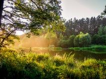 Nebeln Sie über dem Fluss zwischen Wäldern auf einem sonnigen Morgen ein Stockfoto