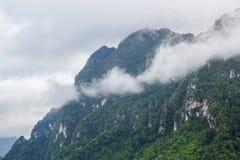 Nebeln Sie auf dem Berg ein Stockbild