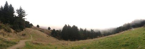 Nebeln Sie auf dem Berg ein USA Stockfotografie