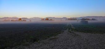 Nebeln Sie auf den Gebieten an einem kalten Herbsttag und den Bergen in der Rückseite ein Stockfotografie