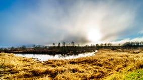 Nebeln Sie das Hängen über Pitt River und dem Pitt-Addingtonsumpf in Pitt Polder nahe Ahorn Ridge im Britisch-Columbia, Kanada ei Lizenzfreies Stockbild