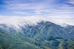 Nebeln Sie das Umfassen der Montara-Berg-McNee-Ranch-Nationalparklandschaft, Kalifornien ein stockfotos