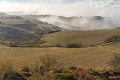 Nebeln Sie das Weizenfeld morgens eingeben ein stockfotografie