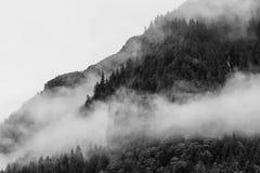 Nebeln Sie die Abdeckung der Gebirgswälder mit tiefer Wolke in Juneau Alaska für Nebellandschaft ein Lizenzfreie Stockfotografie