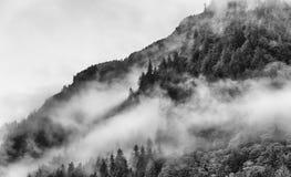Nebeln Sie die Abdeckung der Gebirgswälder mit tiefer Wolke in Juneau Alaska für Nebellandschaft ein Lizenzfreie Stockfotos
