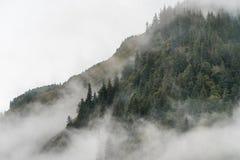 Nebeln Sie die Abdeckung der Gebirgswälder mit tiefer Wolke in Juneau Alaska für Nebellandschaft ein Lizenzfreie Stockbilder