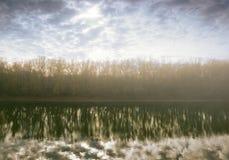 Nebeln Sie im Wald, in Hintergrundbeleuchtungssonne und in Bäumen ein, die im Fluss reflektiert werden Stockfoto