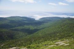 Nebeln Sie Rollen in Acadia-Nationalpark, Maine ein Stockbilder
