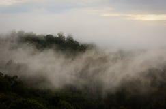 Nebelrollen herein Lizenzfreie Stockbilder