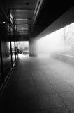 Nebelstraße Stockbilder