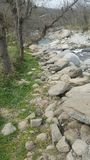 Neben dem Fluss Stockfotografie