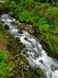 Nebenfluss in Alaska stockbilder