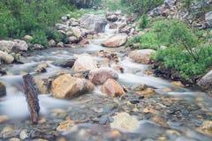 Nebenfluss am Berg Edith Cavell Lizenzfreies Stockbild
