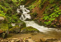 Nebenfluss in den Bergen lizenzfreie stockfotografie