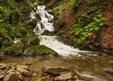 Nebenfluss in den Bergen stockfotografie