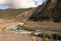 Nebenfluss in den Bergen, Montana Stockfotografie