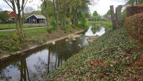 Nebenfluss in den Niederlanden stockbilder