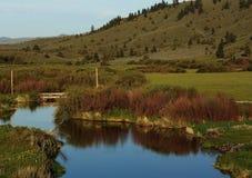 Nebenfluss, der durch Ackerland läuft Lizenzfreie Stockfotos