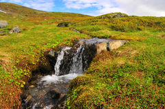Nebenfluss in der Tundra Lizenzfreie Stockfotos
