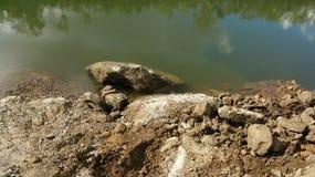Nebenfluss Flussangeln Townsville Ross Lizenzfreies Stockbild