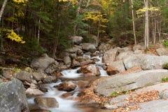 Nebenfluss im Herbst Stockbilder
