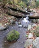 Nebenfluss im Herbst Lizenzfreies Stockbild