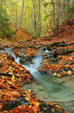 Nebenfluss im Herbst stockfoto