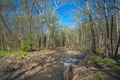 Nebenfluss im Vorfrühling in Ohio stockfoto