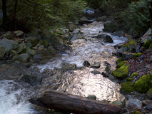 Nebenfluss mit Moos bedeckte Felsen Stockfoto
