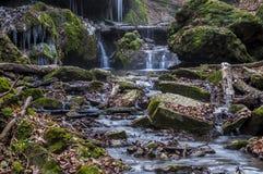 Nebenfluss tief im Wald Stockfoto