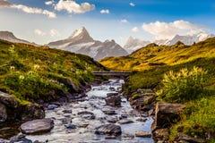 Nebenfluss und Berg Lizenzfreie Stockfotos