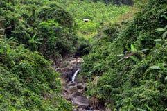Nebenfluss und eine Hütte in Vietnam stockbilder