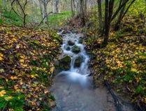 Nebenfluss-Wasserfall Stockfotografie