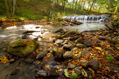 Nebenflusskaskaden im Wald Lizenzfreies Stockfoto