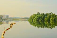 Neblina contra el ambiente verde Imágenes de archivo libres de regalías
