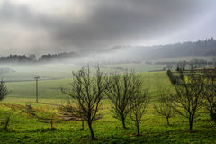 Neblina del otoño en el prado Fotos de archivo
