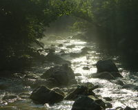 Neblina sobre el río de la montaña Foto de archivo libre de regalías