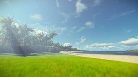 Neblina tropical de la mañana de la playa, cámara del viaje almacen de video