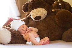 Neborn Napping With Teddy. Neborn baby napping with a big teddy bear Stock Photos