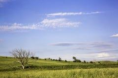 NEBRASKA LANDSCAPE Royalty Free Stock Photo