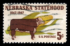 Nebraska Statehood US Postage Stamp Royalty Free Stock Photos