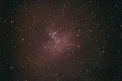 nebula för örn m16 Fotografering för Bildbyråer