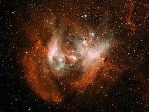 Nebulosa corriente del pollo foto de archivo libre de regalías