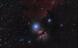 Nebulosa de la pista de caballo Imágenes de archivo libres de regalías