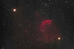 Nebulosa de las medusas imagen de archivo