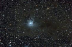 Nebulosa de reflexión en la constelación de Cepheus. Foto de archivo libre de regalías